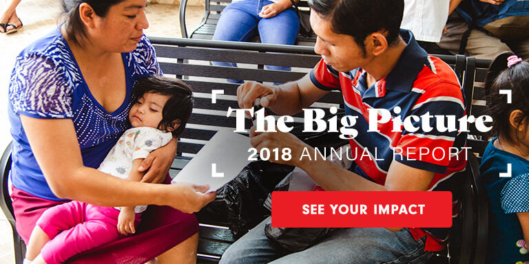 The Big Picture - 2018 Annual Report