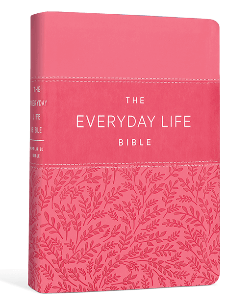 Everyday Life Bible (Pink Euroluxe)
