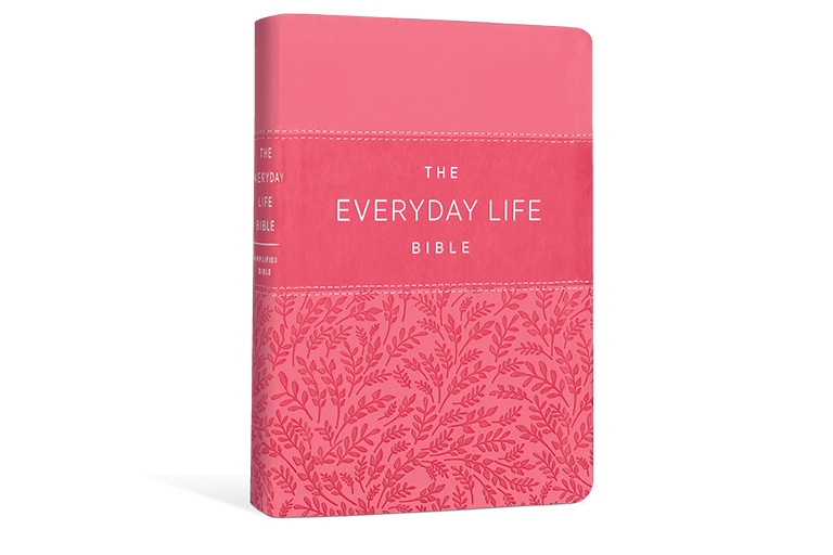 The Everyday Life Bible - Joyce Meyer Ministries